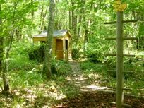 Wendy house in the woods
