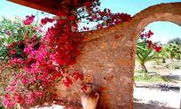 Casa Susurro Image 11