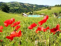 The grounds at Villa Pian Di Cascina