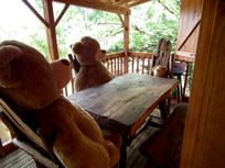 Pagel - Goldilock's Cabin Image 5