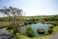 Duck pond with beautiful views of the valley beyond