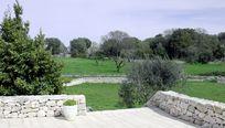 Casa Olive Image 16