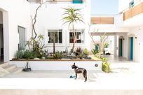 Ammos - Garden View Suite Image 20