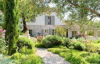 Rou Estate - Thyme Image 5