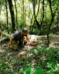 Join a truffle hunt with Massimo and his trusted hound Yuma, walking distance from Casa San Gabriel