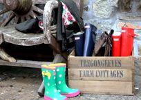 Gallery - Tregongeeves Farm Image 7