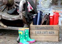 Donkey Mill - Tregongeeves Farm Image 5