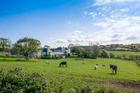 Views across the field towards the farm