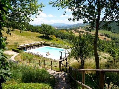 Family Friendly Holidays at Agriturismo Pian Di Cascina  - Cantina
