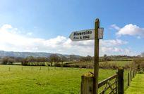 Wagtail Corner - Stonehayes Farm Image 11