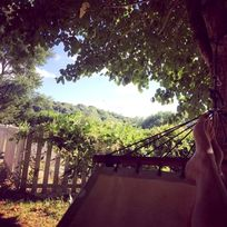hammock time - a great place to escape the heat