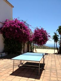 Table tennis on the main terrace