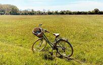 Wonderful biking trails