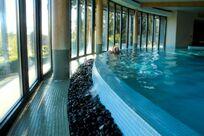 The Cornwall - Gold Vista Lodge Image 11