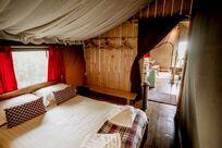 Safari Tent 4 Image 3