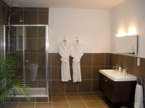 Chateau de Chargé - Shower room with double handbasin