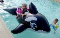 Having a whale of a time