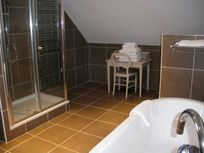 Chateau de Chargé - bath & shower room