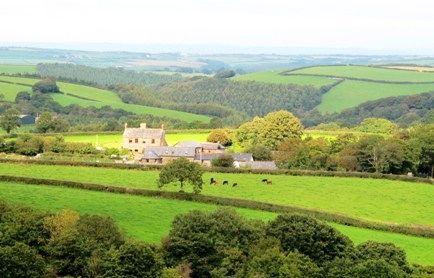 Bramble Cottage Image 17