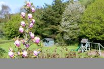 West Charleton Grange - Pypard Image 18