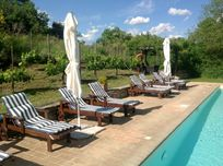 Swimming pool beds and umbrellas