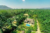 Eden Villa Image 4