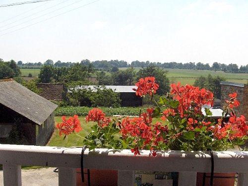 Haute Mancelière - Alouettes Image 20
