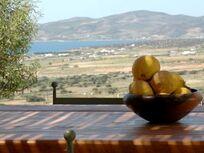 Olive House Image 24