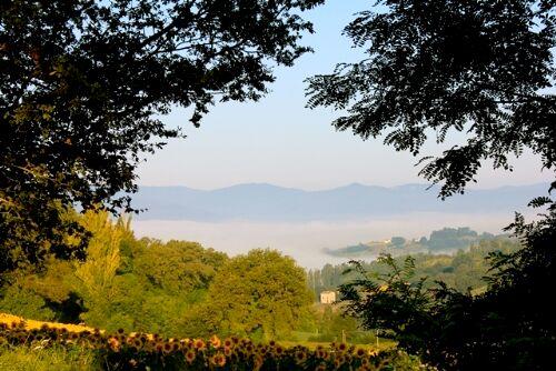 Casa Delle Grazie - La Torretta Image 3