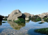 Great rockpools nearby