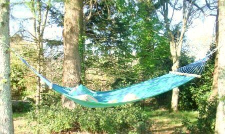 A quiet spot for a hammock