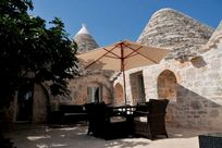 The courtyard, secluded with a large fig tree