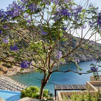 Daios Cove - Deluxe Sea View Room Image 19