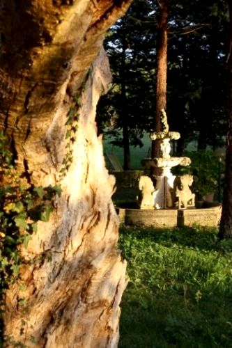 Casale I Perugini - 2-Bedroom Apartment Image 11