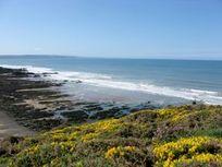 Close to the South West Coastal path