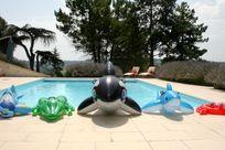 Meet the pool toys!