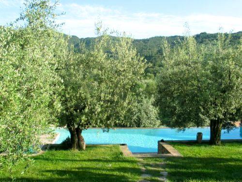 Il Fontanaro - Frantoio Image 3
