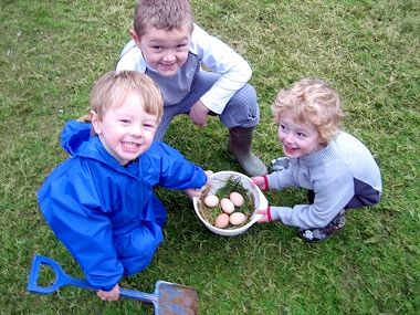 Clydey Egg Collecting