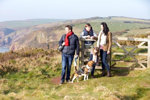 Pet friendly walks on the coastal path