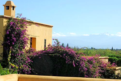 Fawakay Villas - Villa Sannor Image 17