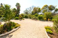 Quinta das Achadas - Bouganvillea Image 10