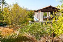 Quinta das Achadas - Bouganvillea Image 4