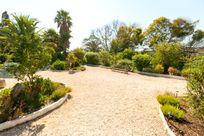 Quinta das Achadas - Jasmine Image 8