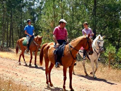 Horseriding can be arranged