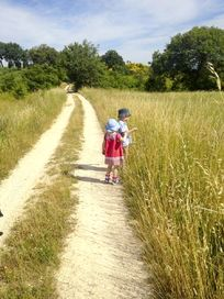 Lovely nature walks in the surrounding countryside -
