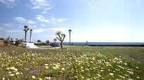 Children´s Playa Area - Trampoline