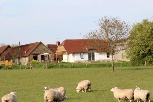 Summerleaze Barn Image 4