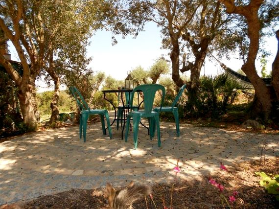 Quinta da Alfarrobeira (Granja), Algarve Image 17
