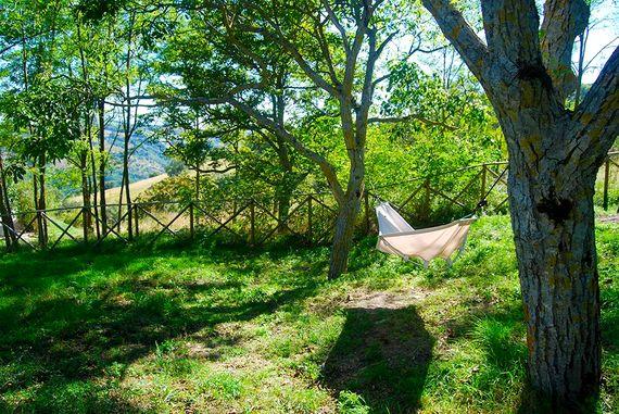 Our lazy hammock