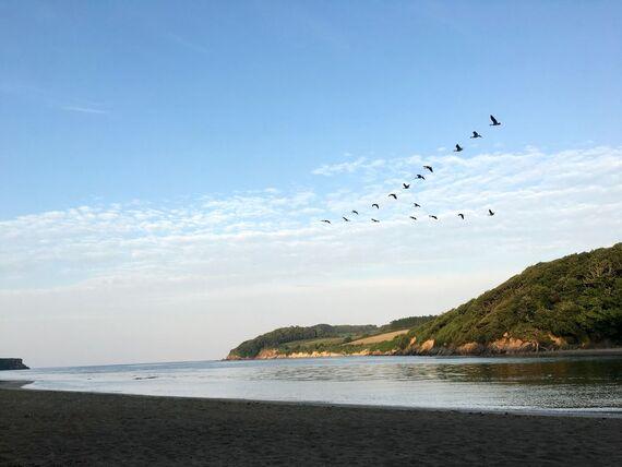 Wonwell Estuary Beach- 10 minutes drive away